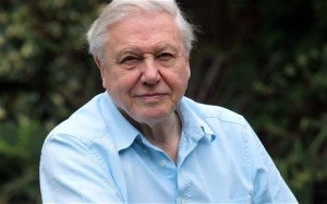 Sir David Attenborough might be used by the UK government to break the news of an alien visitation to Earth (credit: Rex Features/Daily Telegraph)